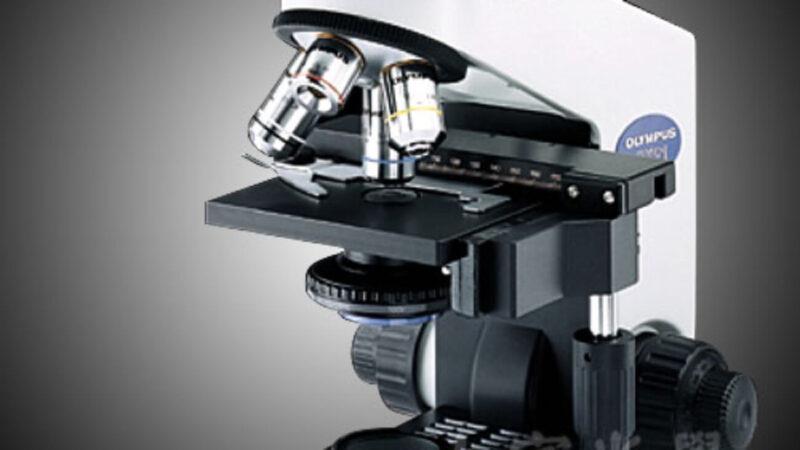 Những loại kính hiển vi phổ biến