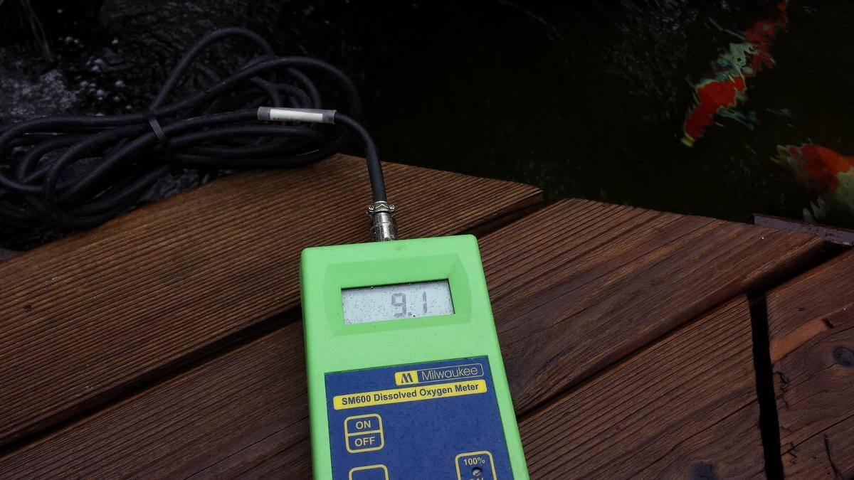 Máy đo oxy hòa tan Milwaukee SM600